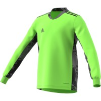 Лонгслив AdiPro 20 Goalkeeper Jersey Youth Longsleeve